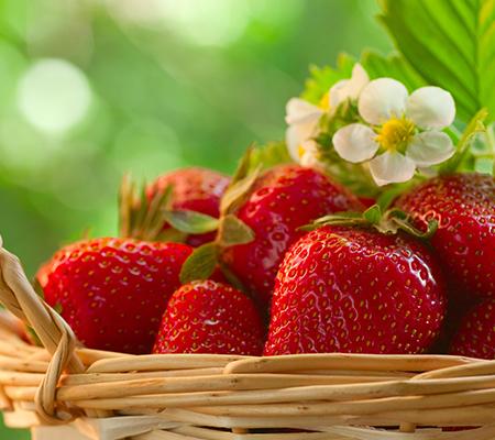 Topscare - Aardbeien